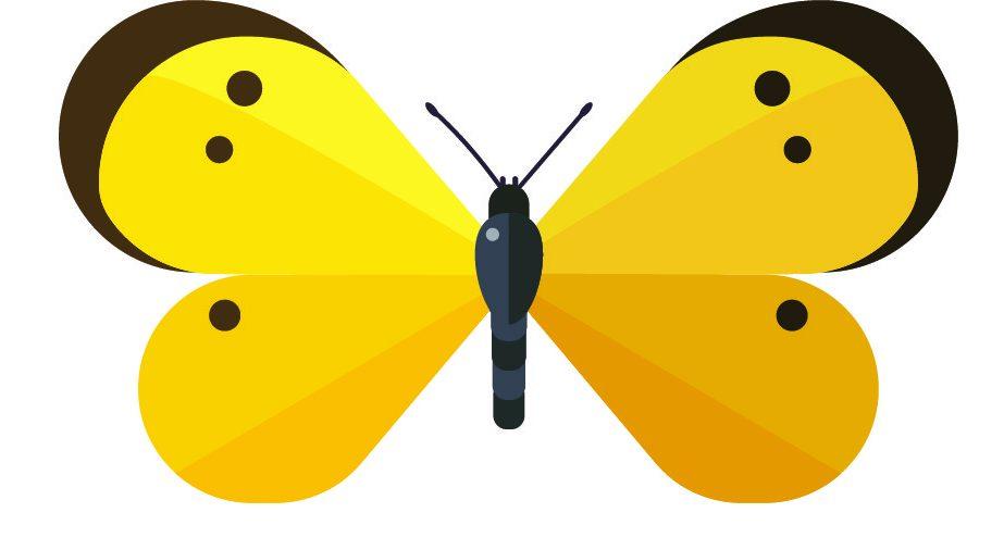 Great Georgia Pollinator Census August 20-21, 2021