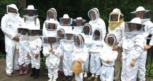Read more about the article Junior Beekeeper Programs